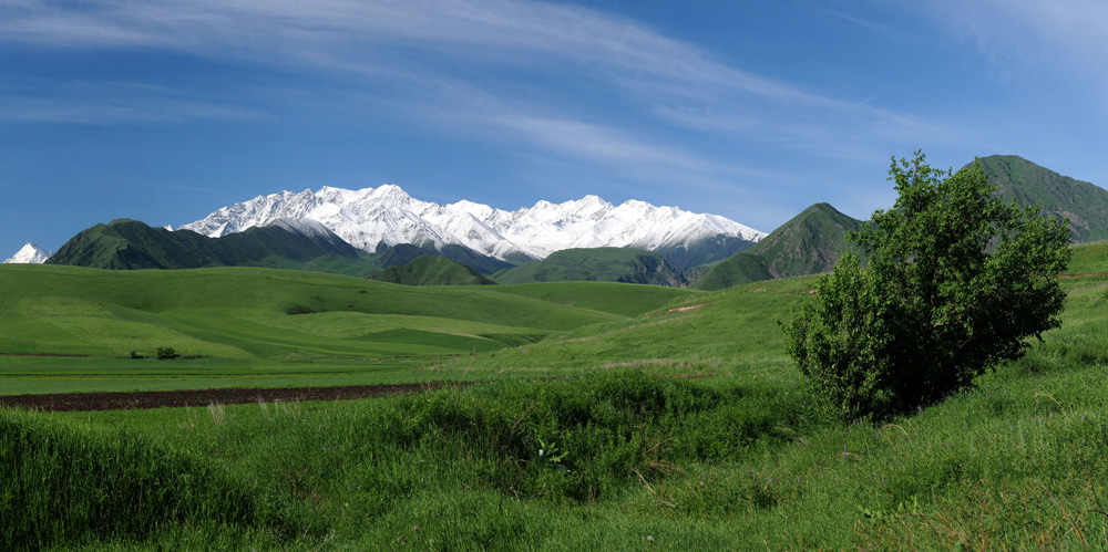Chui Valley